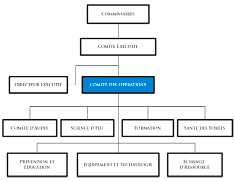 Operations Committee flowchart