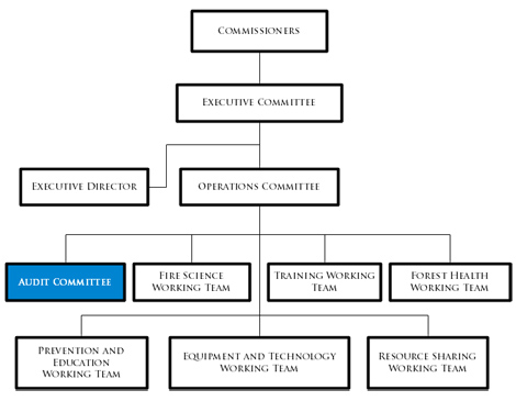 Audit Committee flowchart